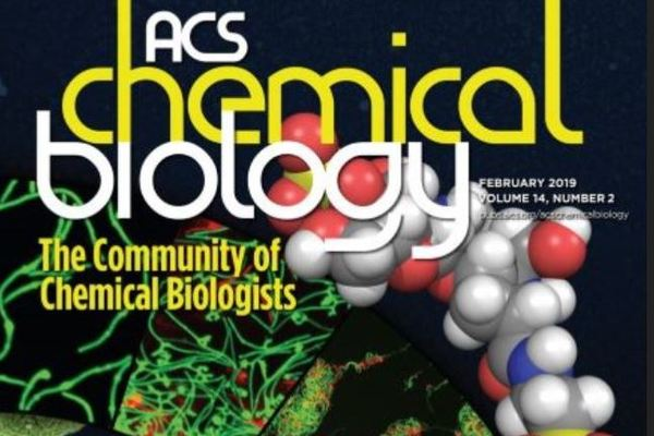 Former EIGH fellow, David Dik, published in ACS Chemical Biology